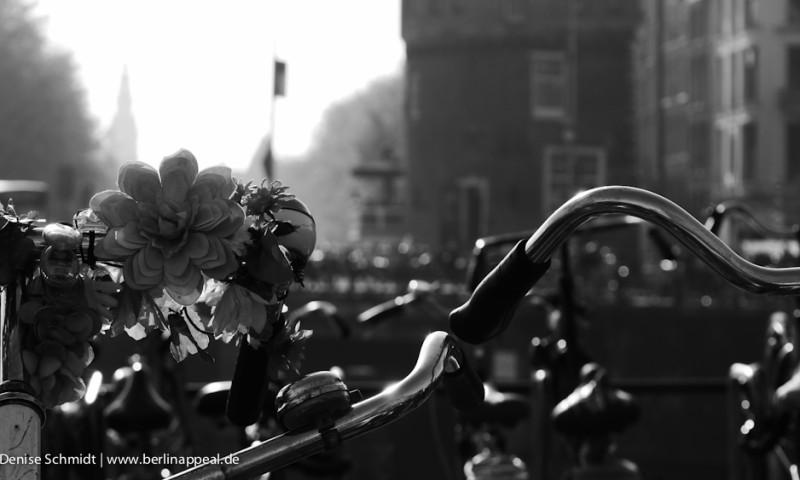 Holland – Natur pur und das Paradies der Fahrradfahrer